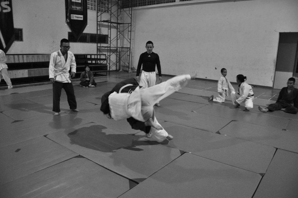 judo vs jiu jitsu